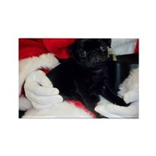 Pug Puppy Christmas Rectangle Magnet