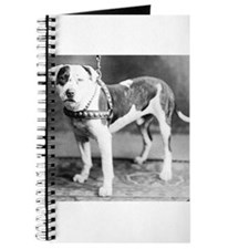 Websters Joker, a famous Colby bred dog Journal