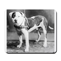 Websters Joker, a famous Colby bred dog Mousepad