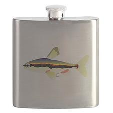 Golden Pencilfish tropical fish Amazon Flask