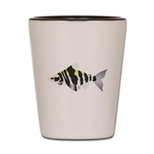 Highbacked Headstander tropical fish Shot Glass
