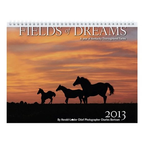 2013 Fields of Dreams Calendar