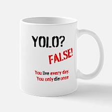 YOLO? FALSE YODO Mug