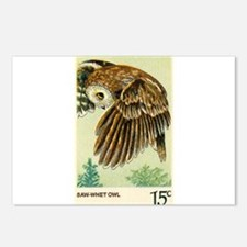 1978 United States Saw whet Owl Postage Stamp Post