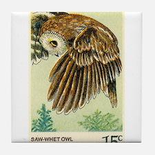 1978 United States Saw whet Owl Postage Stamp Tile