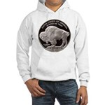 Silver Buffalo-Indian Hooded Sweatshirt