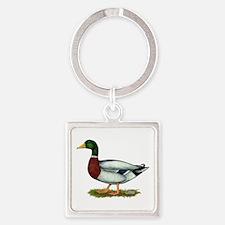 Mallard Duck Drake Square Keychain