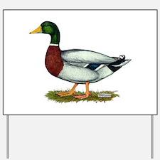 Mallard Duck Drake Yard Sign