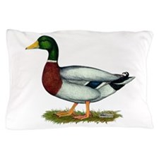 Mallard Duck Drake Pillow Case