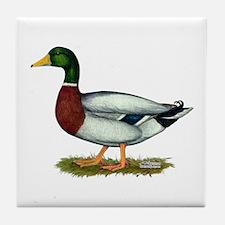 Mallard Duck Drake Tile Coaster