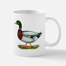Mallard Duck Drake Mug