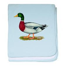 Mallard Duck Drake baby blanket
