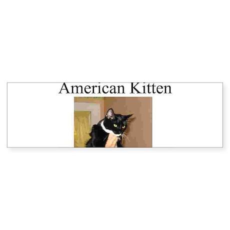 Cat Bumber Sticker