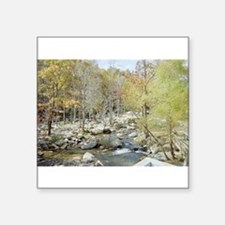 """Peaceful Creek in the Woods Square Sticker 3"""" x 3"""""""