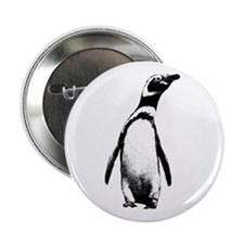 "Jackass Penguin Art 2.25"" Button (10 pack)"