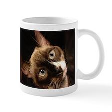 A Siamese Cat Mug