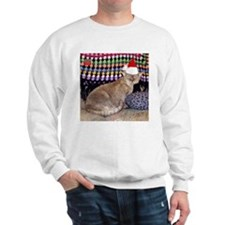 Devon Rex Sweater