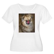 Tibbie Tricks T-Shirt