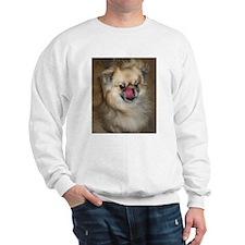 Tibbie Tricks Sweatshirt