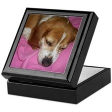 Dog Nap! Keepsake Box