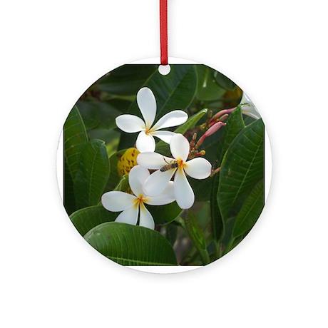 Frangipani Ornament (Round)