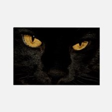 Sexy Black Cat Rectangle Magnet (10 pack)