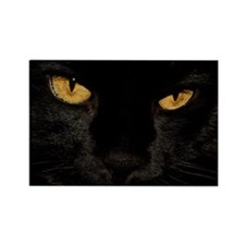 Sexy Black Cat Rectangle Magnet