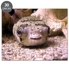 Helaine's Blowfish (Pufferfish ) Puzzle
