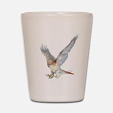 striking Red-tail Hawk Shot Glass