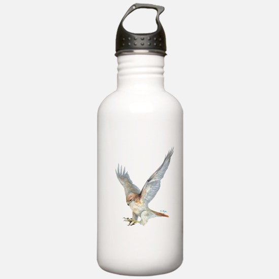 striking Red-tail Hawk Sports Water Bottle
