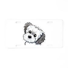 Shih Tzu Sweetie Aluminum License Plate