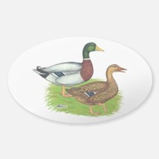 Mallard Ducks Sticker (Oval)
