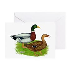 Mallard Ducks Greeting Card