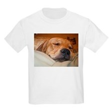 You Snooze, You Lose T-Shirt