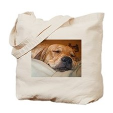 You Snooze, You Lose Tote Bag