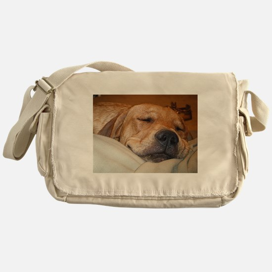 You Snooze, You Lose Messenger Bag