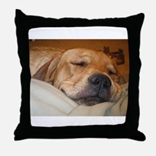 You Snooze, You Lose Throw Pillow