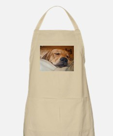 You Snooze, You Lose Apron