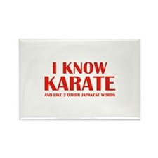 I Know Karate Rectangle Magnet