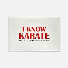 I Know Karate Rectangle Magnet