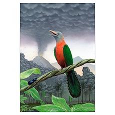 Cretaceous bird, artwork Poster