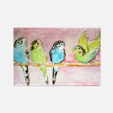 Parakeets Posturing Rectangle Magnet