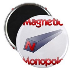 Magnetic Monopole Magnets
