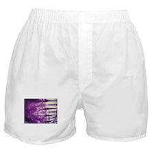 Cute Feng shui Boxer Shorts