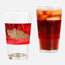 ONU Pet Cats Art Drinking Glass