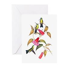 Hummingbirds Greeting Cards (Pk of 20)