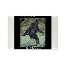 Have You Seen BIGFOOT? Rectangle Magnet (10 pack)