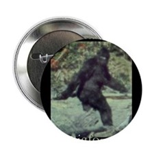 "Have You Seen BIGFOOT? 2.25"" Button"