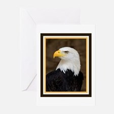 American Bald Eagle Greeting Cards (Pk of 20)