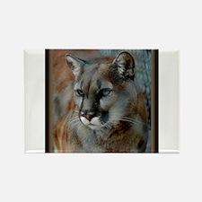 Cougar Cat Rectangle Magnet